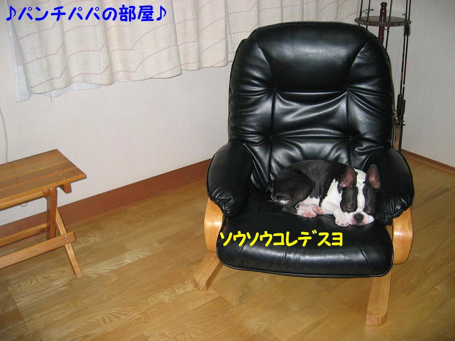a0080889_036171.jpg