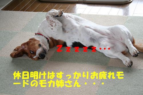 f0121712_15332042.jpg