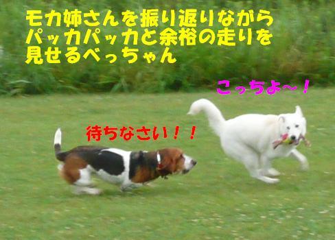 f0121712_1533657.jpg