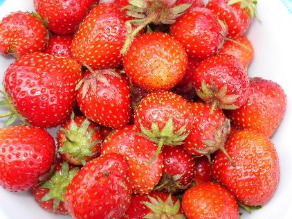 シンクロトマト:トマトのタルト・タタン風_f0012916_182292.jpg