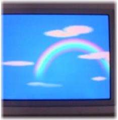 虹&つっぱりチョビ_b0105719_23204390.jpg