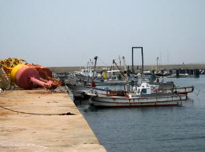 漁港の小さな船が係留されている一部分。防波堤に囲まれた中に沢山の漁船、ボートが係留されていました。