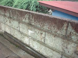 石塀修理と明日の準備と契約その他・・・_f0031037_19283549.jpg