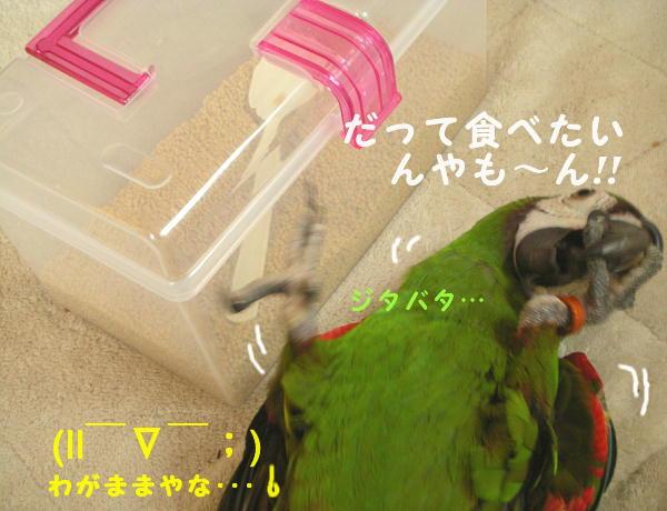 f0132055_0243157.jpg