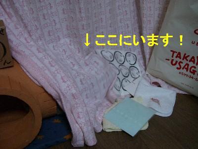 f0104057_19545810.jpg
