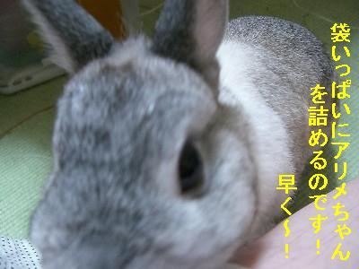 f0104057_20133635.jpg