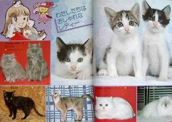 ミニレディー百科『かわいいペット』_e0002769_202001.jpg