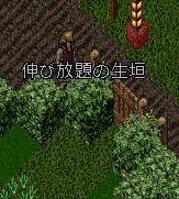 【コートの秘密シリーズ】第1弾アスカ編!!_a0100479_20164635.jpg