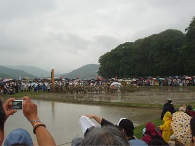 稲と海の原風景 〜伊雑宮・御田植祭〜_e0074793_14404924.jpg