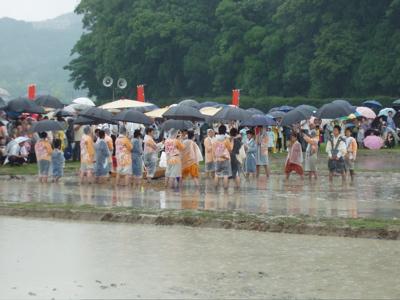 稲と海の原風景 〜伊雑宮・御田植祭〜_e0074793_14583719.jpg