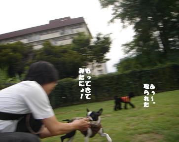 f0110199_11563293.jpg