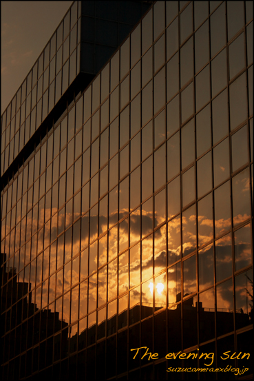 夕陽_f0100215_23301880.jpg