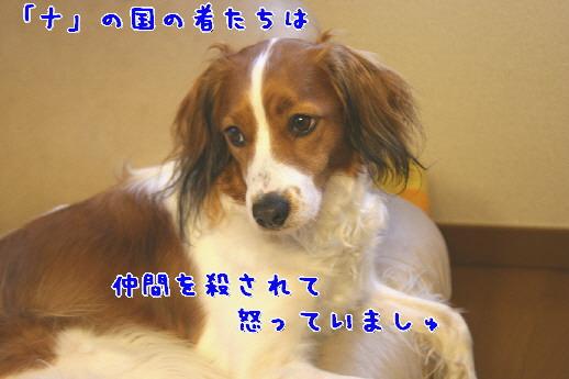 d0013149_2257109.jpg
