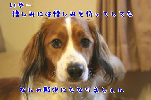 d0013149_23102643.jpg