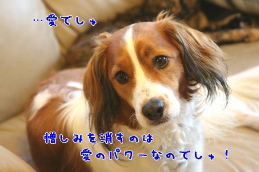 d0013149_23134369.jpg