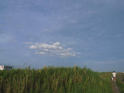 大雨だよ~_c0049299_20123674.jpg