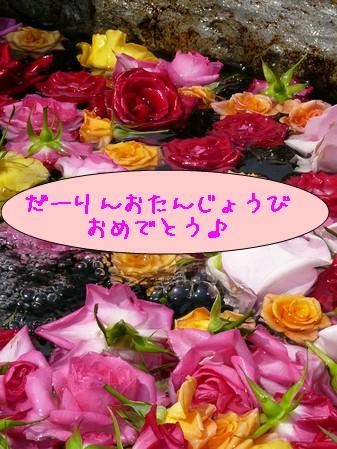 f0021101_17384595.jpg