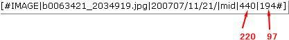 b0063421_2103279.jpg