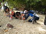 CHUUK島(トラック島)フォトギャラリー パート2_d0046025_8594639.jpg