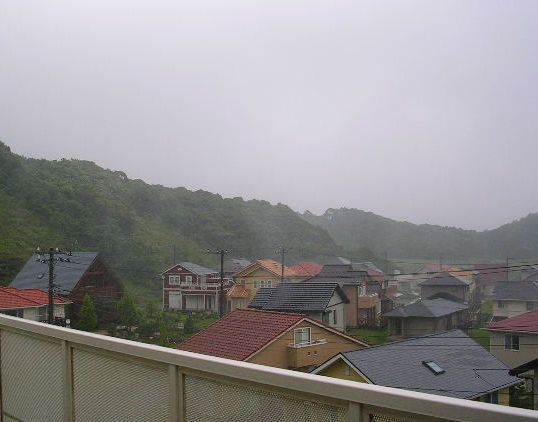 7月11日(水)・・・本当の梅雨!_f0060461_814313.jpg