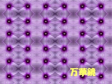 f0003174_125715.jpg