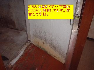 左官・大工・・明日は塗装か・・笑_f0031037_17274830.jpg