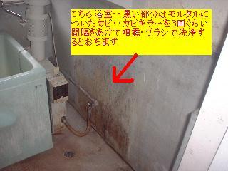 f0031037_17275943.jpg
