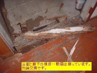 f0031037_1728107.jpg