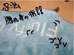 b0110692_220373.jpg