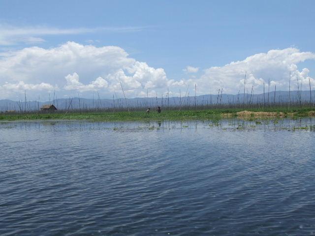 <インレー湖> インレー湖を走る、走る、もっと走る_c0011649_118869.jpg