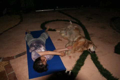 Doga: Yoga for Dogs ・・・まじで?!_c0057850_11434525.jpg