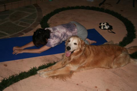 Doga: Yoga for Dogs ・・・まじで?!_c0057850_1144986.jpg