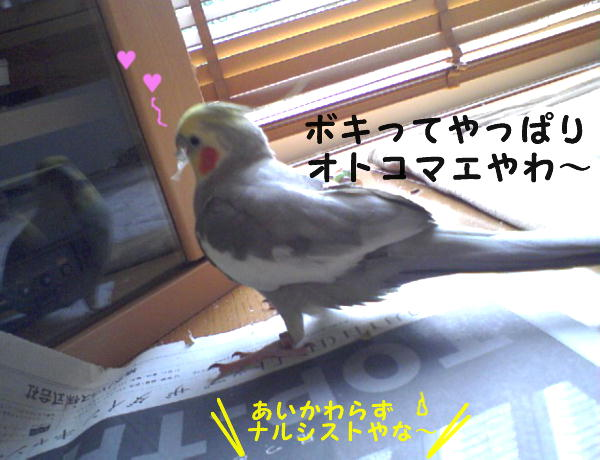 f0132055_17103598.jpg
