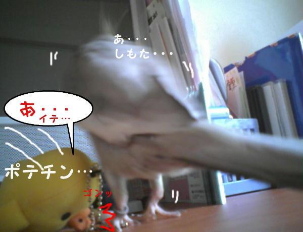 f0132055_1733752.jpg