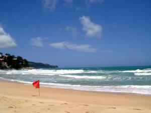 南国っぽいビーチ_f0144385_0515743.jpg