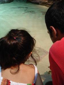 水族館に行きました~ジェノバ_f0106597_22134069.jpg