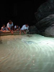 水族館に行きました~ジェノバ_f0106597_22756.jpg