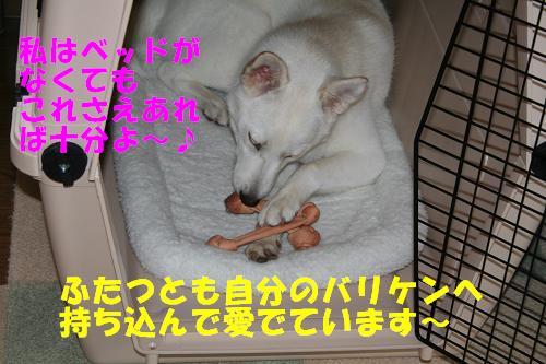 f0121712_17501416.jpg