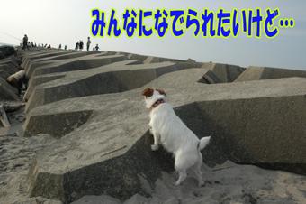 f0035044_1324443.jpg