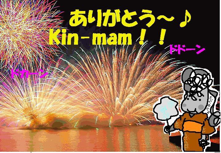 Kin-mam便/なつおさん、今年の夏は これです!!_f0096569_11152359.jpg