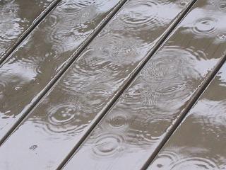 雨模様_a0085381_1949666.jpg