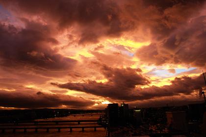 台風の置きみやげ_c0049299_2042797.jpg