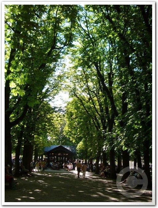 ■夏のリュクサンブルグ公園(パリ)_a0008105_8415485.jpg