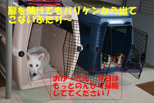 f0121712_14433696.jpg