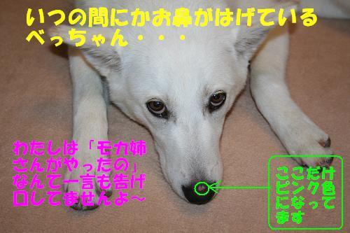 f0121712_14465479.jpg