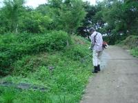 ビオトープ周辺草刈り・・・定例活動日_c0108460_16372427.jpg