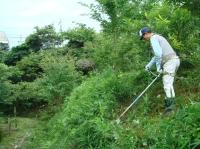 ビオトープ周辺草刈り・・・定例活動日_c0108460_16383676.jpg
