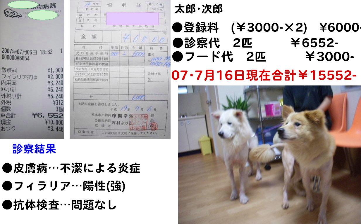 b0072501_16145972.jpg