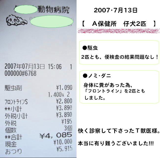 b0072501_17251227.jpg