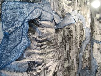 260)ギャラリー ニュー・スター 「藤谷康晴個展」 終了(7月9日まで)_f0126829_1429496.jpg